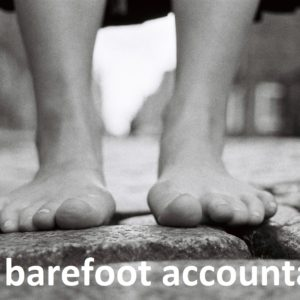 the barefoot accountant